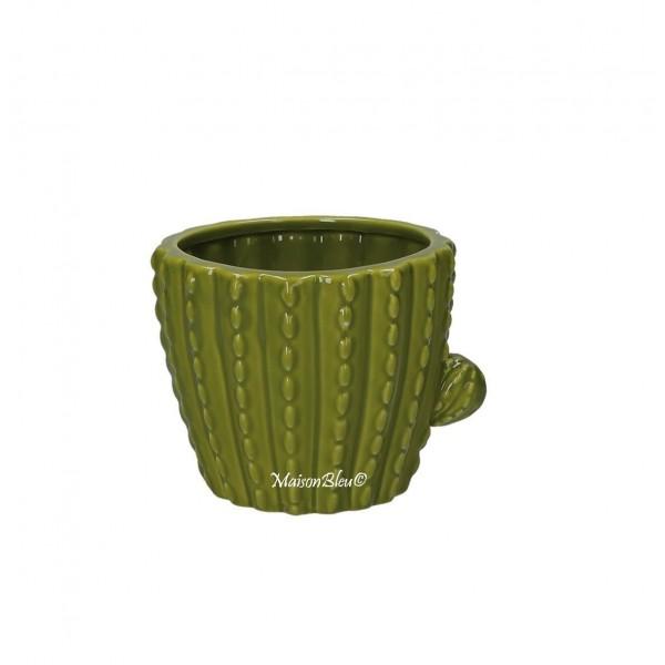 Porta Vaso Cactus Messico Piccolo